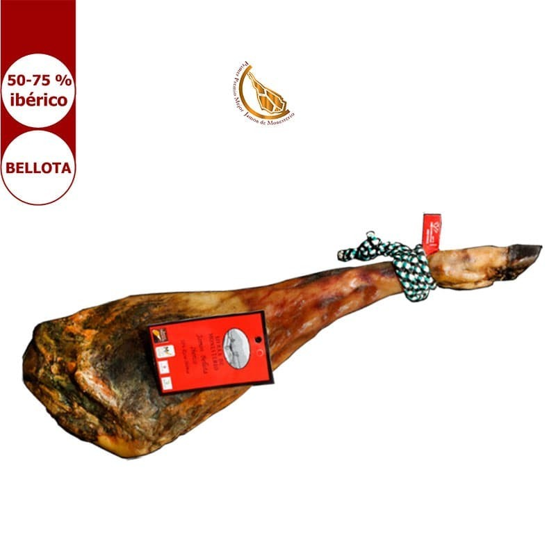 Iberischen Eichel schinken aus Extremadura